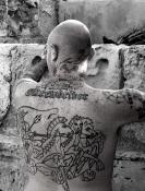 skinhead-364824_1920